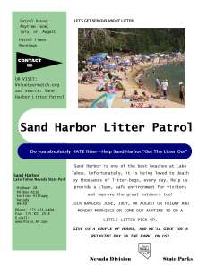 Litter Patrol Flyer